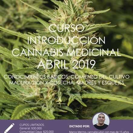 Curso Introductorio de Cannabis Medicinal de Abril