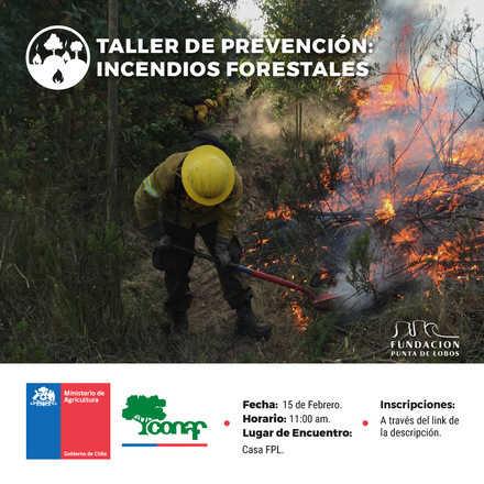 Taller de Prevención de Incendios Forestales