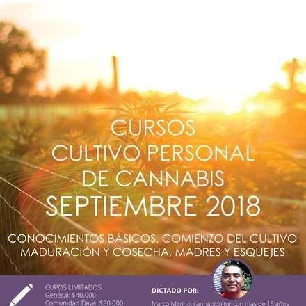 Cursos de Cultivo Personal de Cannabis septiembre 2018