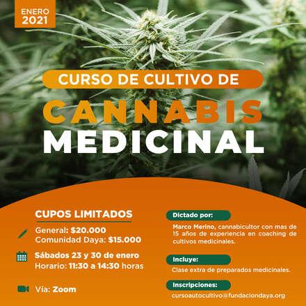 Curso de Cultivo de Cannabis Medicinal enero 2021