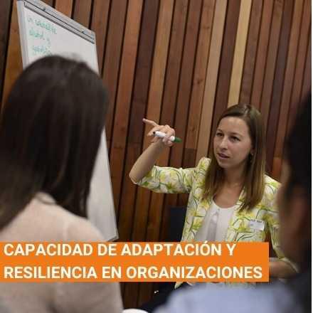 Capacidad de adaptación y resiliencia en organizaciones
