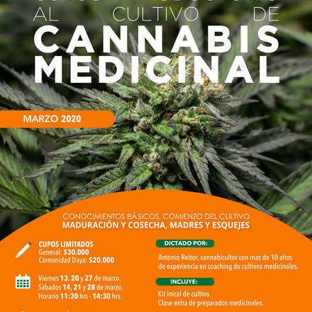 Curso Introductorio al Cultivo de Cannabis Medicinal Marzo 2020