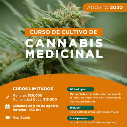 Curso de Cultivo de Cannabis Medicinal, agosto 2020