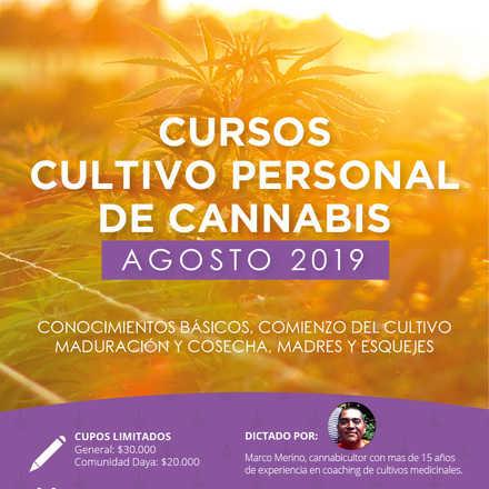 Curso Introductorio al Cannabis Medicinal de Agosto