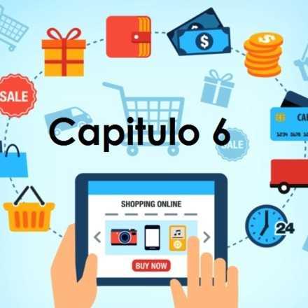 E-commerce, Comercio electronico. Capitulo 6