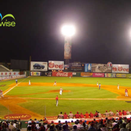 Temporada Beisbol invernal 2014 - Travelwise