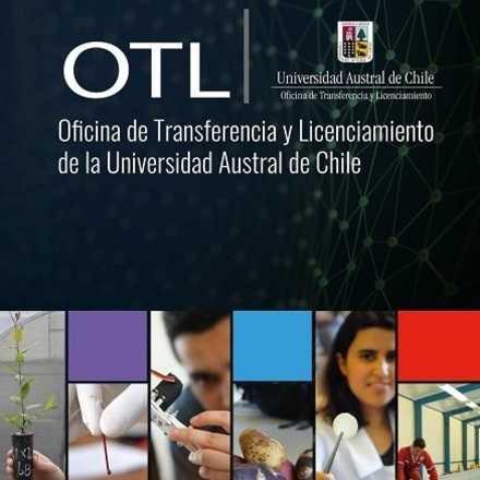 Experiencias en Transferencia Tecnológica desde el I+D de Universidades con impacto en la Sociedad