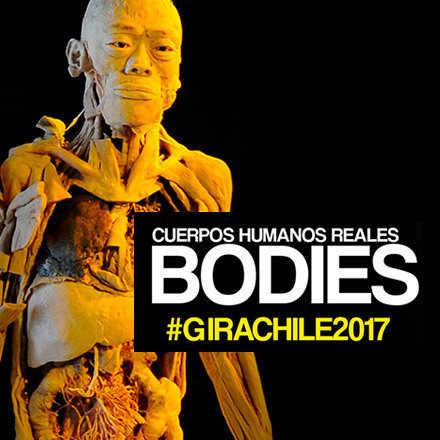 Bodies Santiago