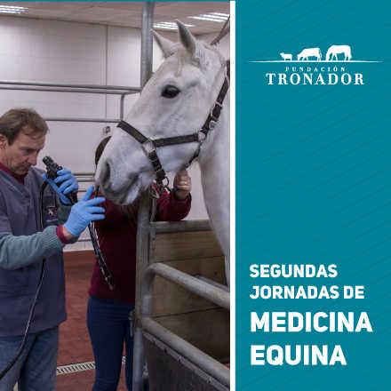 Segundas Jornadas de Medicina Equina