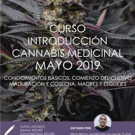 Curso Introductorio de Cannabis Medicinal de Mayo