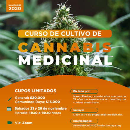 Curso de Cultivo de Cannabis Medicinal noviembre 2020
