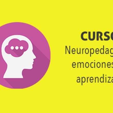 Curso Online Neuropedagogía, emociones vs. aprendizaje