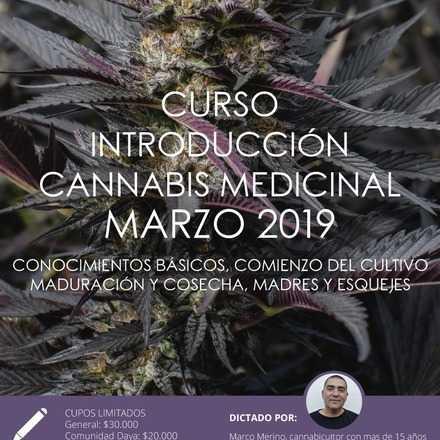 Curso Introductorio de Cannabis Medicinal