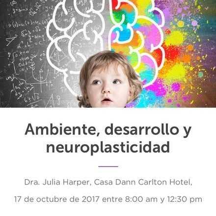 Ambiente, desarrollo y neuroplasticidad