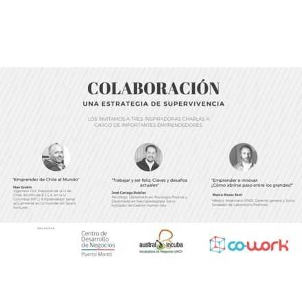 Colaboración: Una estrategia de sobrevivencia