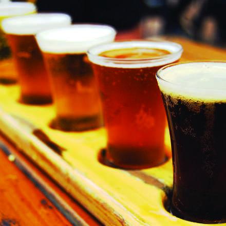 Cata de Cervezas Chilenas