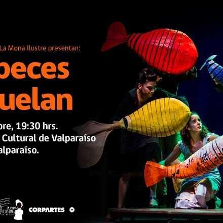 [Teatro] Los peces no vuelan - La Mona Ilustre (19:30 hrs)