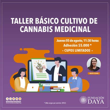 Taller Básico de Cultivo de Cannabis Medicinal 5 agosto 2021
