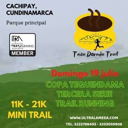 Taza Dorada