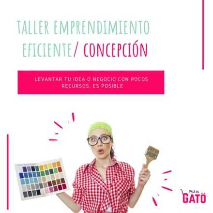 Taller Emprendimiento Eficiente, Concepción