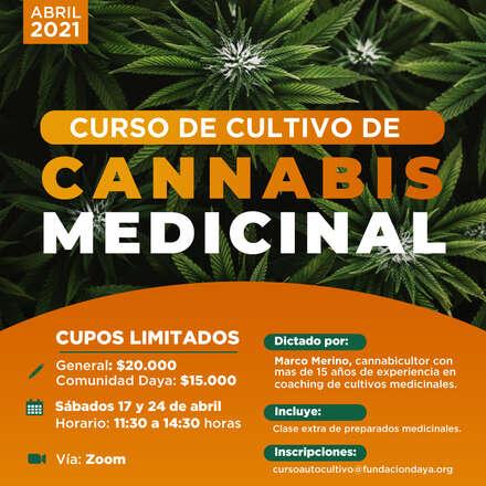 Curso de Cultivo de Cannabis Medicinal Abril 2021