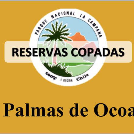 SECTOR PALMAS DE OCOA     06 MARZO