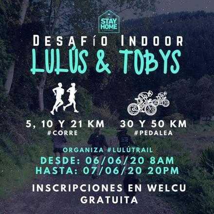 Desafío Indoor Lulus & Tobys