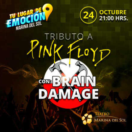 Tributo a Pink Floyd / Brain Damage