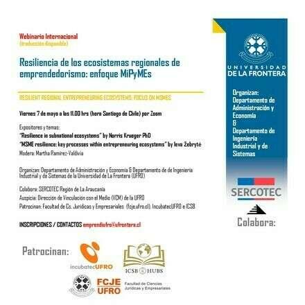 Resiliencia de los ecosistemas regionales de emprendedorismo: enfoque MiPyMEs