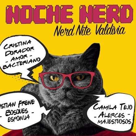 Noche Nerd Valdivia