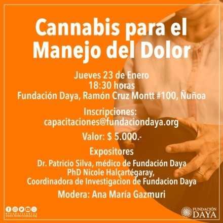 Cannabis para el Manejo del Dolor