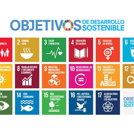 Reunión de Comisión Social Santiago - CANCELADO - ODS en Chile
