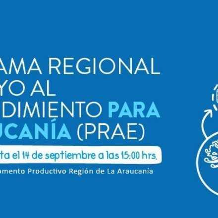 Reuniones Informativas sobre Línea Apoyo Inversión Productiva para la Región de La Araucanía (IPRO), Programa Regional de Apoyo al Emprendimiento (PRAE) y SSAF Desafío