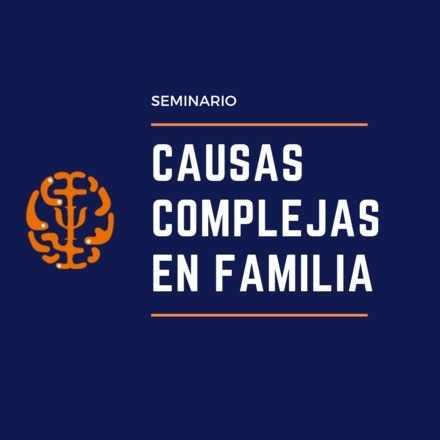 Seminario Causas Complejas en Familia