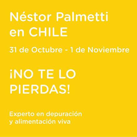 Néstor Palmetti en Chile