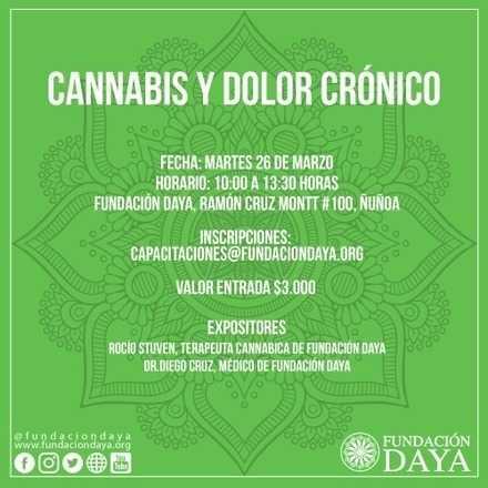 Taller Cannabis y Dolor Crónico