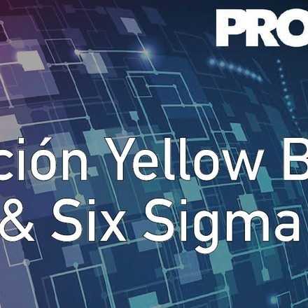 Certificación Yellow Belt Lean & Six Sigma 2da versión