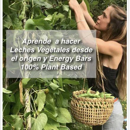 Leches Vegetales desde el Origen y Energy Bars 100% Plant Based con Catalina Amenábar