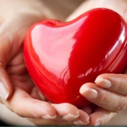 I Jornada informativa de donación de órganos y tejidos - IV Región