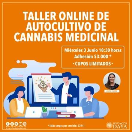 Taller Básico sobre Cultivo de Cannabis Medicinal 3 junio