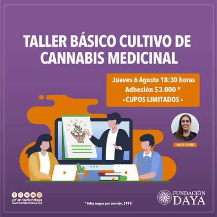 Taller Básico de Cultivo de Cannabis Medicinal 6 agosto