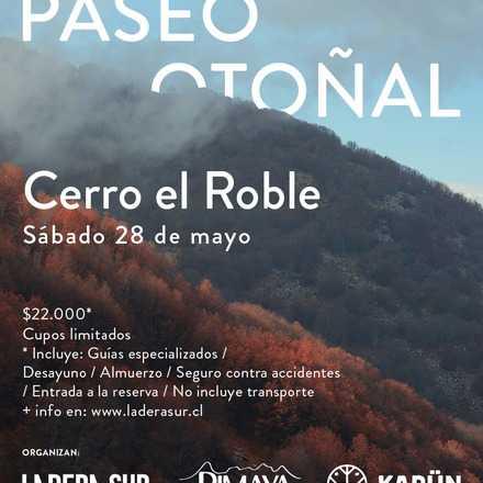 Paseo Otoñal: Cerro el Roble