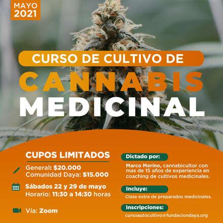 Curso de Cultivo de Cannabis Medicinal Mayo 2021