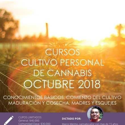 Cursos de Cultivo Personal de Cannabis octubre 2018