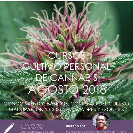 Cursos de Cultivo Personal de Cannabis agosto 2018