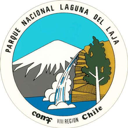 Laguna del Laja 04 de Marzo