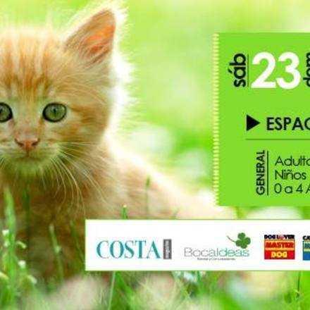 ExpoMascotas: Animales y Exóticos