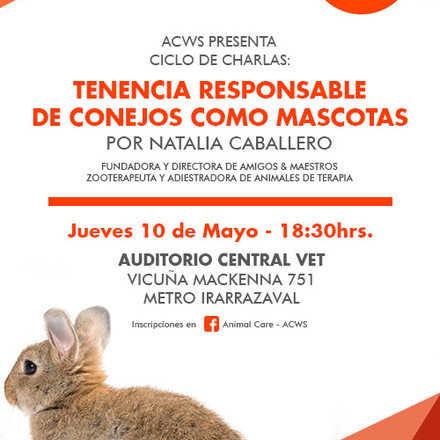 Ciclo de charlas: tenencia responsable de conejos como mascotas