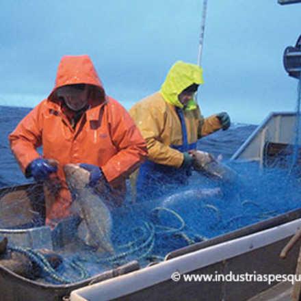 Charla ¿Cuáles son los límites de la gobernabilidad de la pesca?