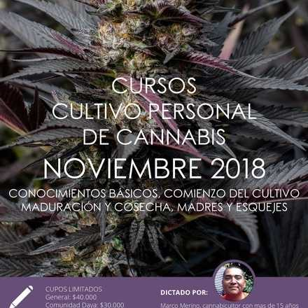 Cursos de Cultivo Personal de Cannabis noviembre 2018